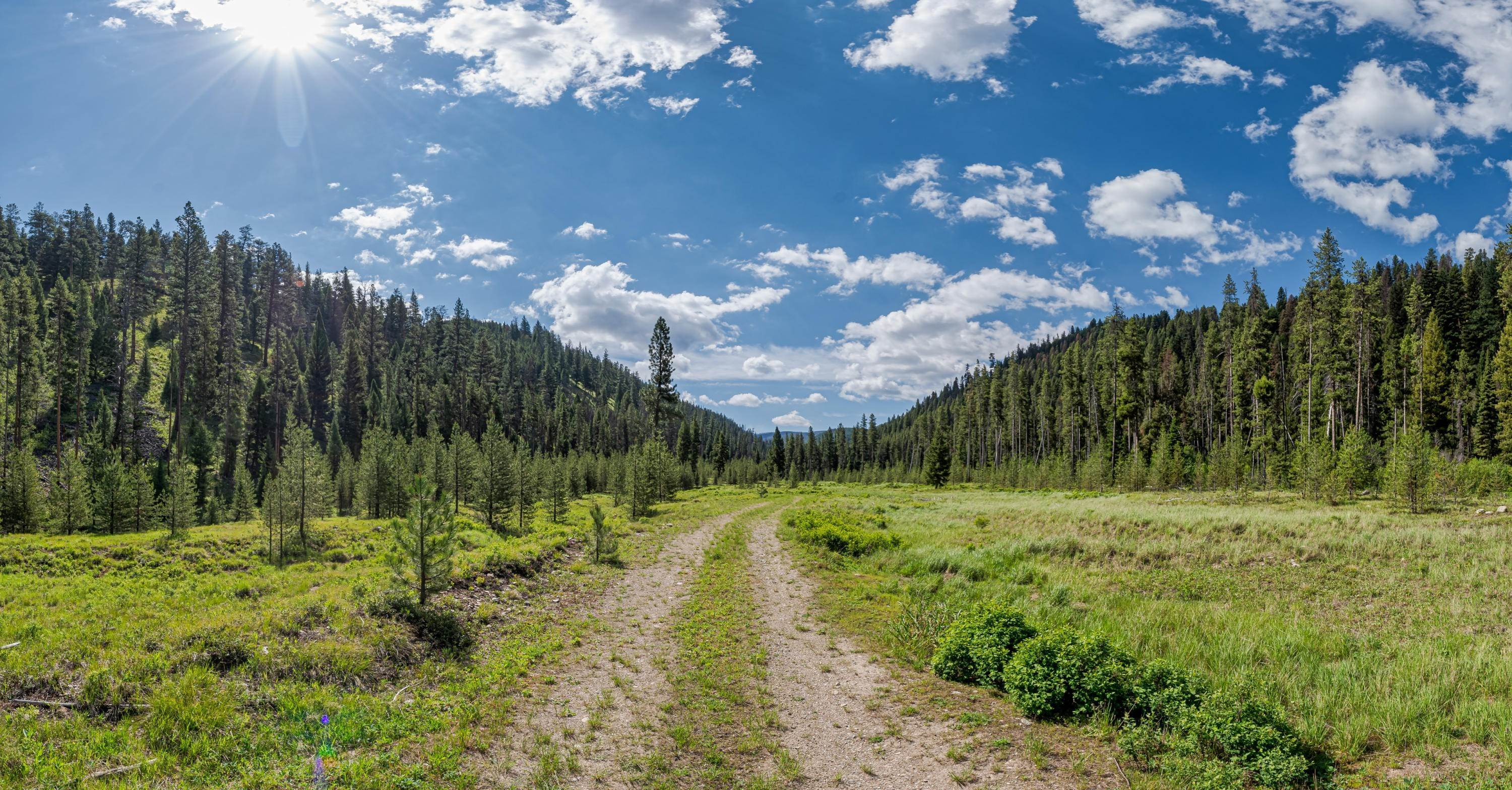 13. Land for Sale at 815 Hughes Creek Road Darby, Montana 59829 United States
