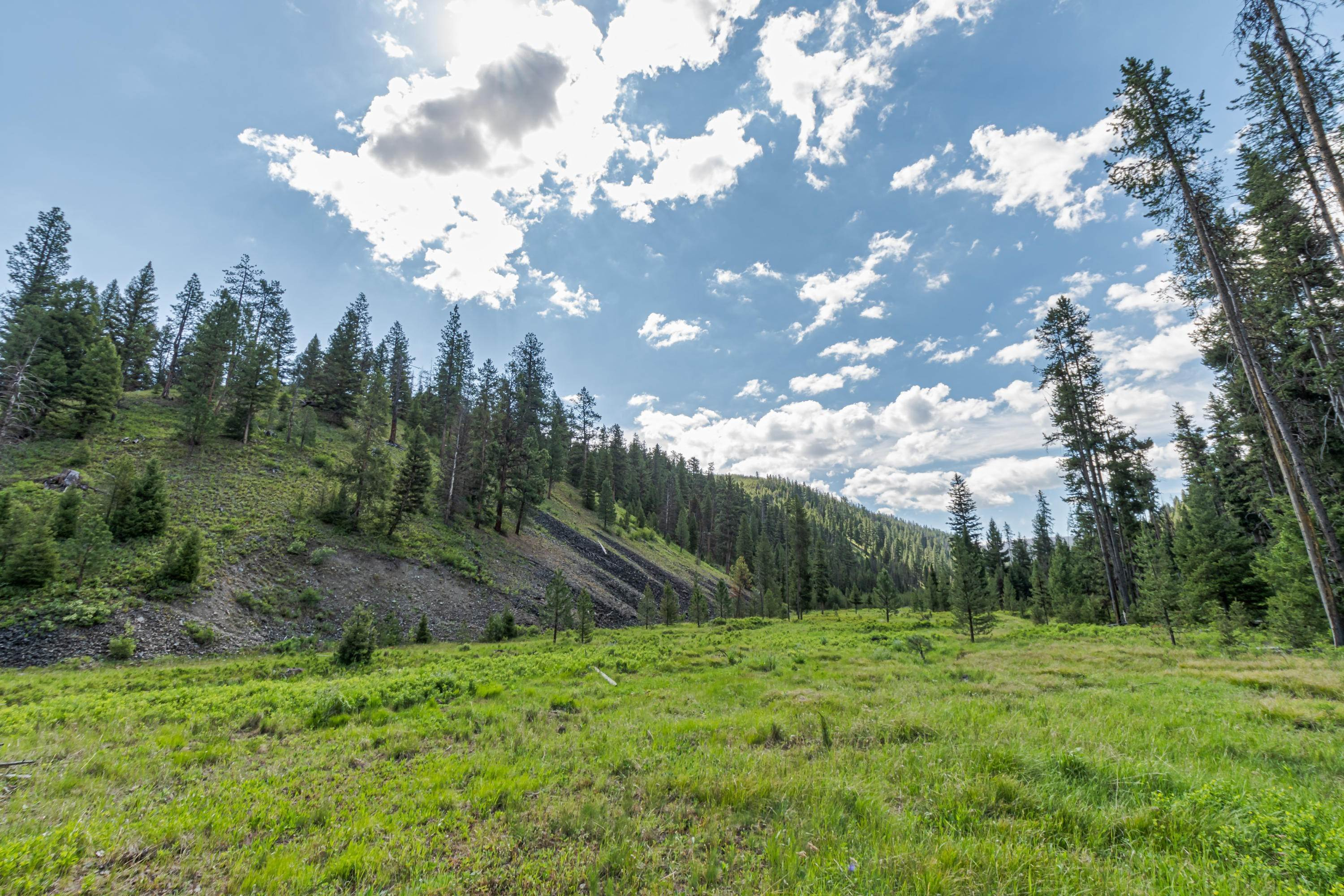 14. Land for Sale at 815 Hughes Creek Road Darby, Montana 59829 United States