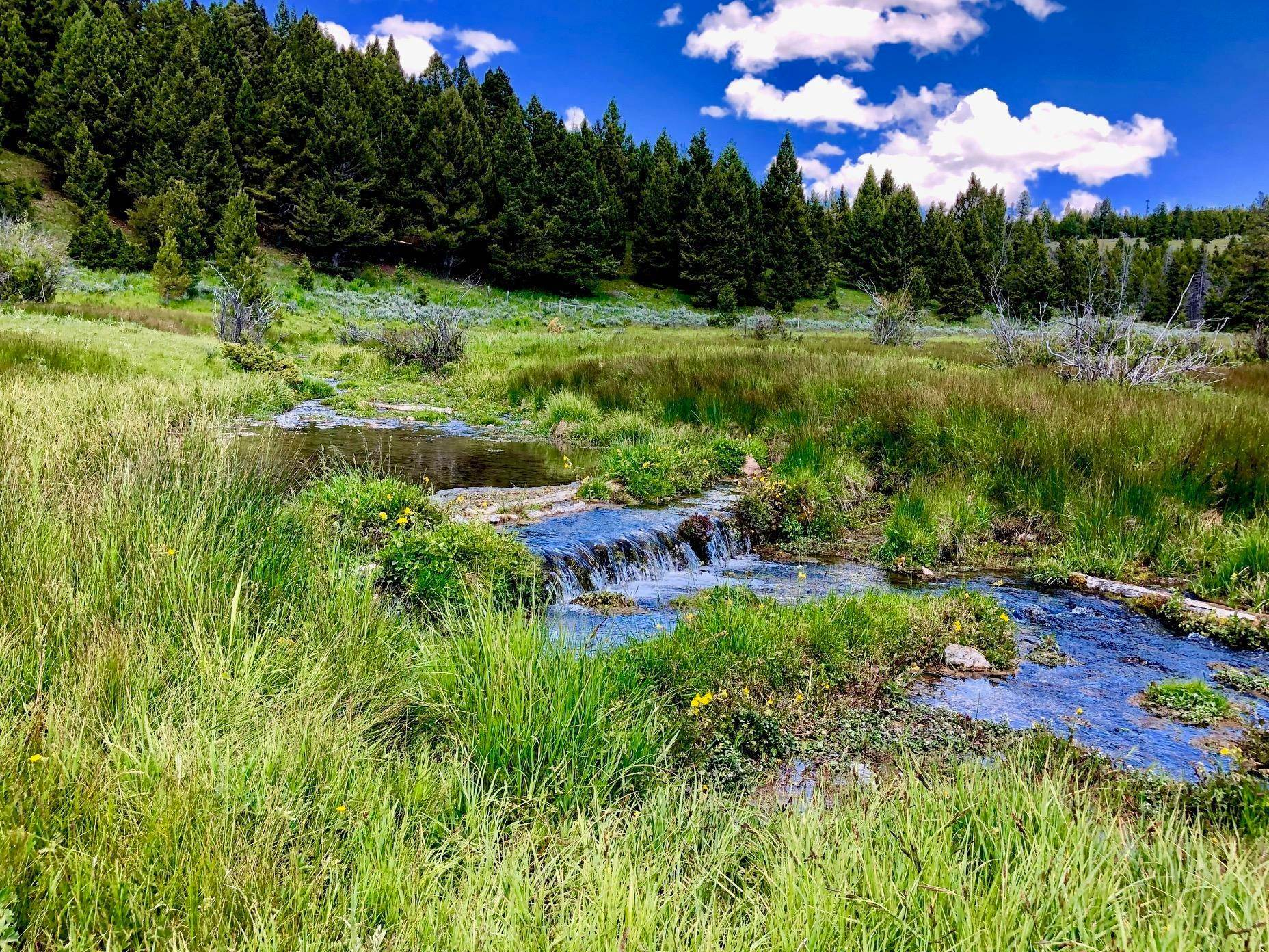 Land for Sale at Hope Creek Road Helena, Montana 59602 United States