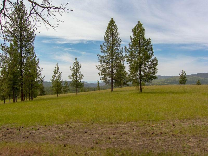 Land for Sale at 3185 Hubbart Dam Road Marion, Montana 59925 United States