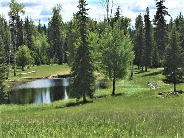 2. Land for Sale at Lot 4 Antler Ridge Road Condon, Montana 59826 United States