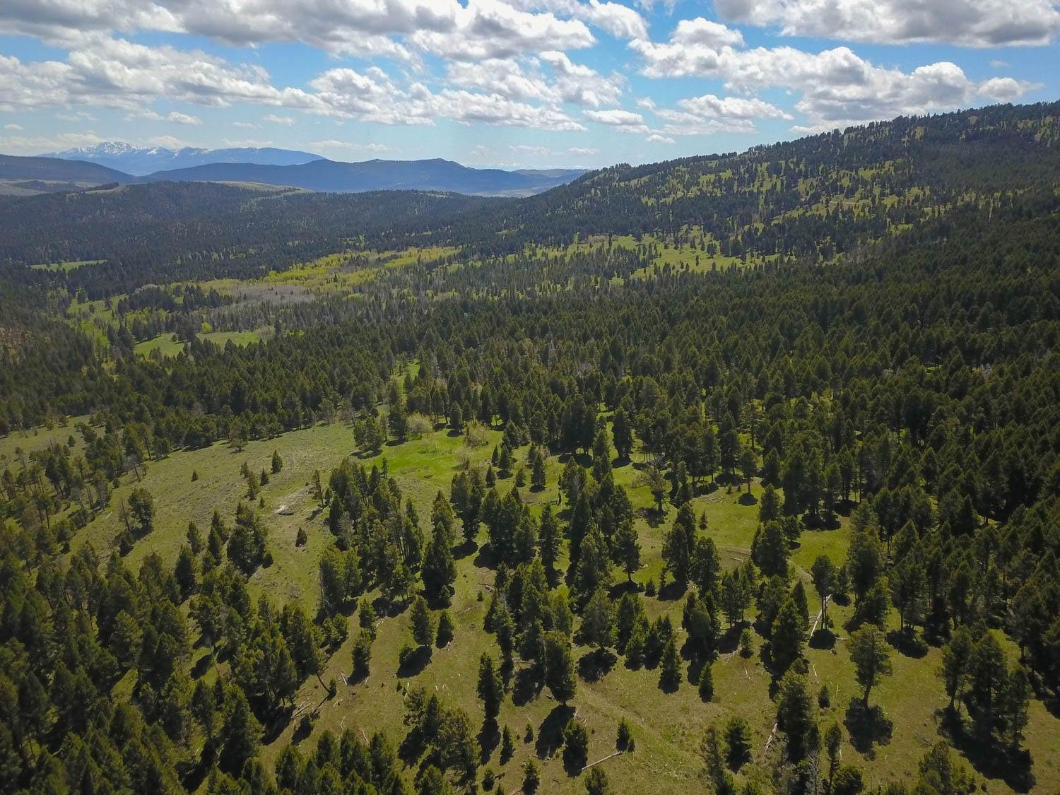Land for Sale at Grassy Mountain Road Townsend, Montana 59644 United States