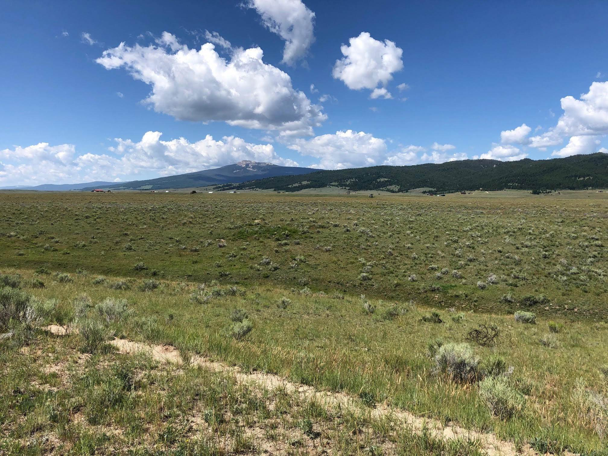 Land for Sale at Buxton Road Butte, Montana 59701 United States