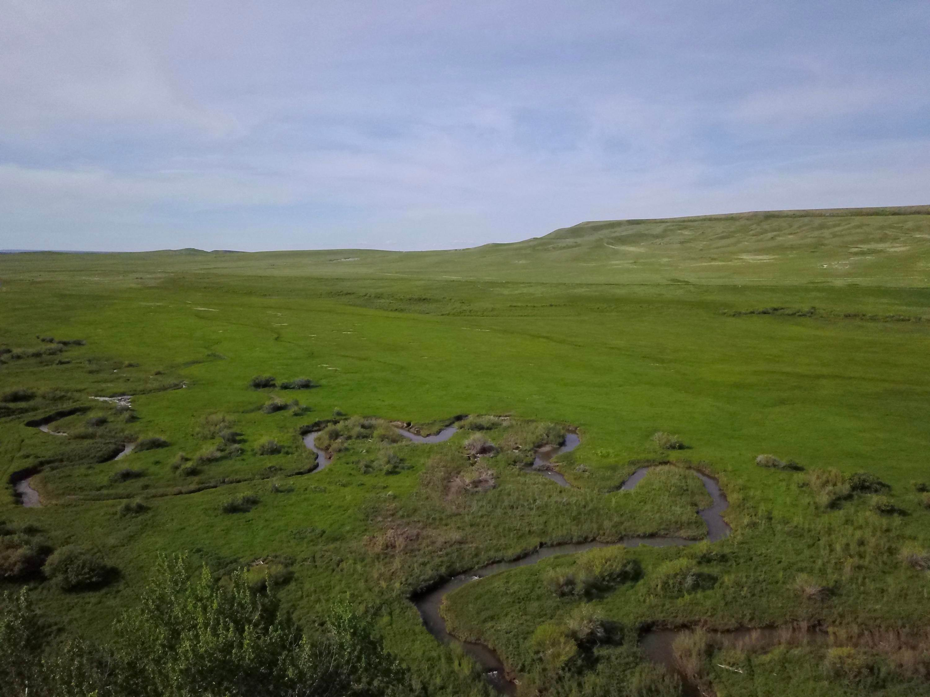 20. Farm / Agriculture for Sale at 1761 Bellview Road Choteau, Montana 59422 United States