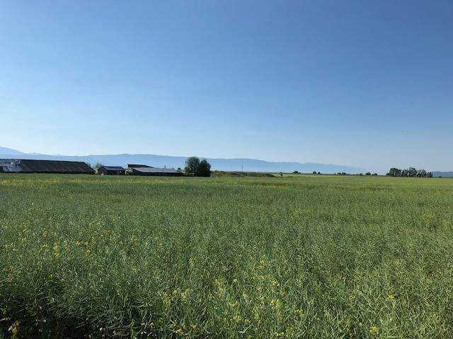 Land for Sale at 1040 Mt-82 Somers, Montana 59932 United States