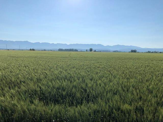 3. Land for Sale at 1040 Mt-82 Somers, Montana 59932 United States