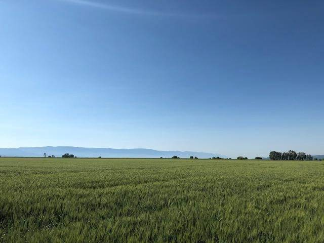 7. Land for Sale at 1040 Mt-82 Somers, Montana 59932 United States
