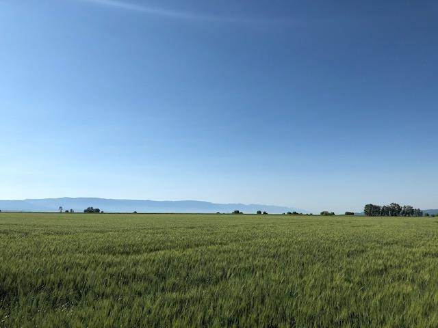 14. Land for Sale at Mt-82 Somers, Montana 59932 United States