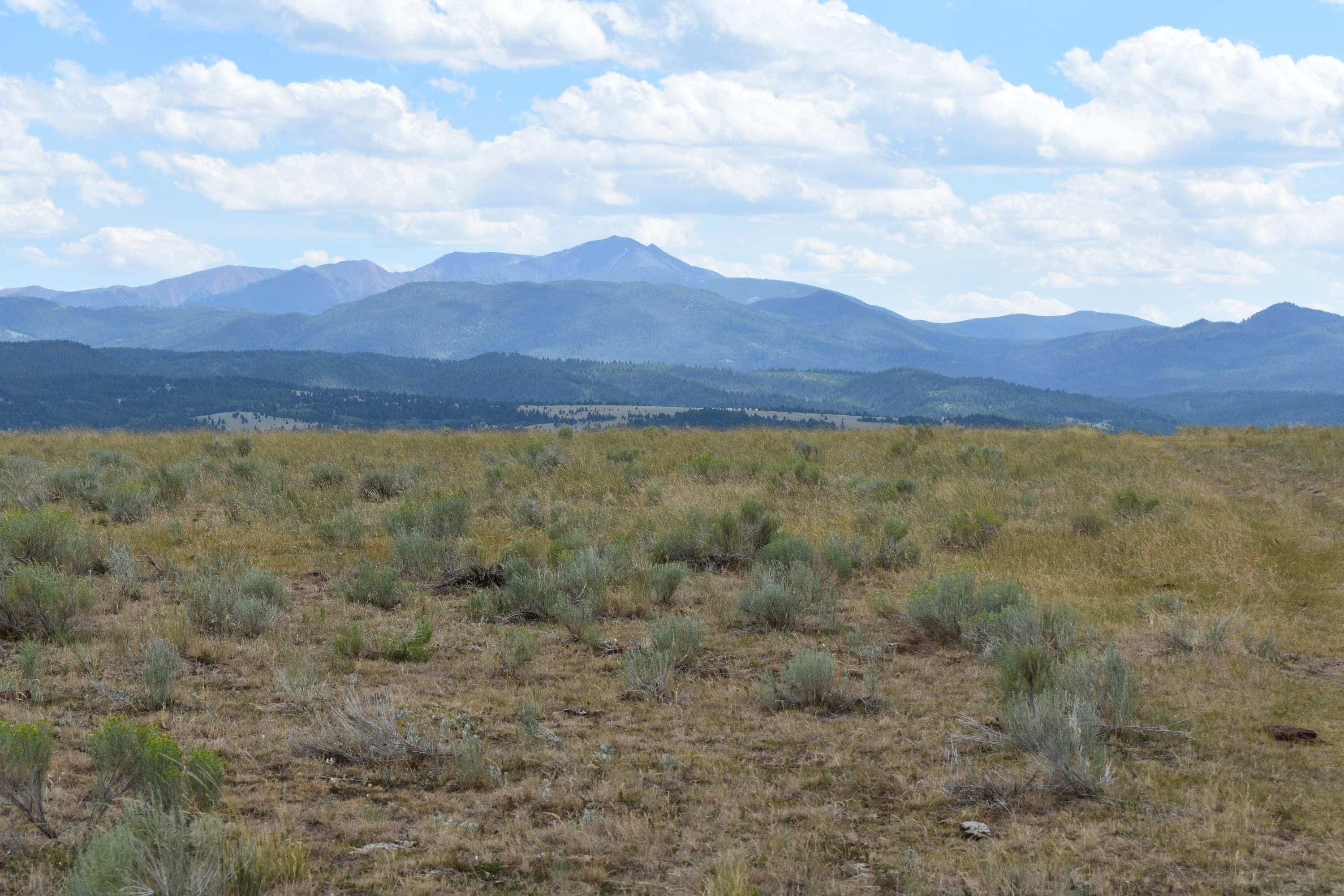 Land for Sale at Little Basin Creek Road Butte, Montana 59701 United States