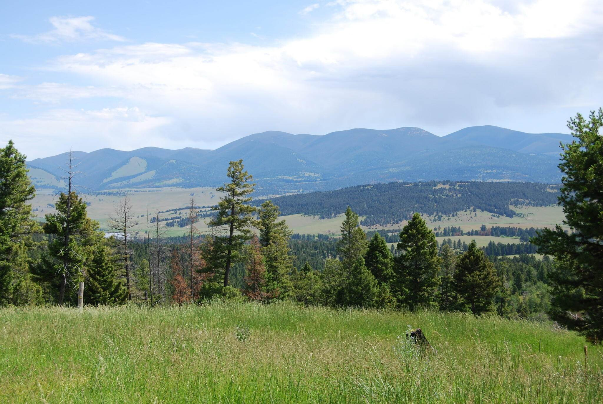 Farm / Agriculture for Sale at Nhn Mt-141 Avon, Montana 59713 United States