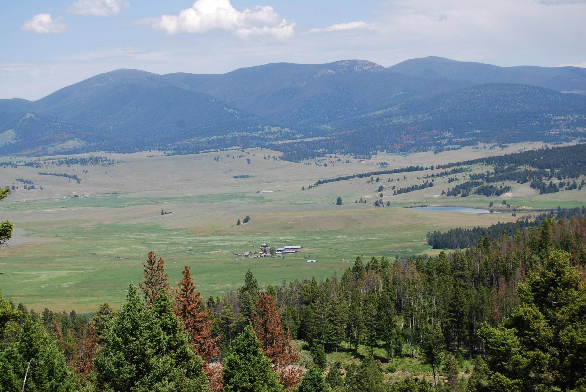 14. Farm / Agriculture for Sale at Nhn Mt-141 Avon, Montana 59713 United States