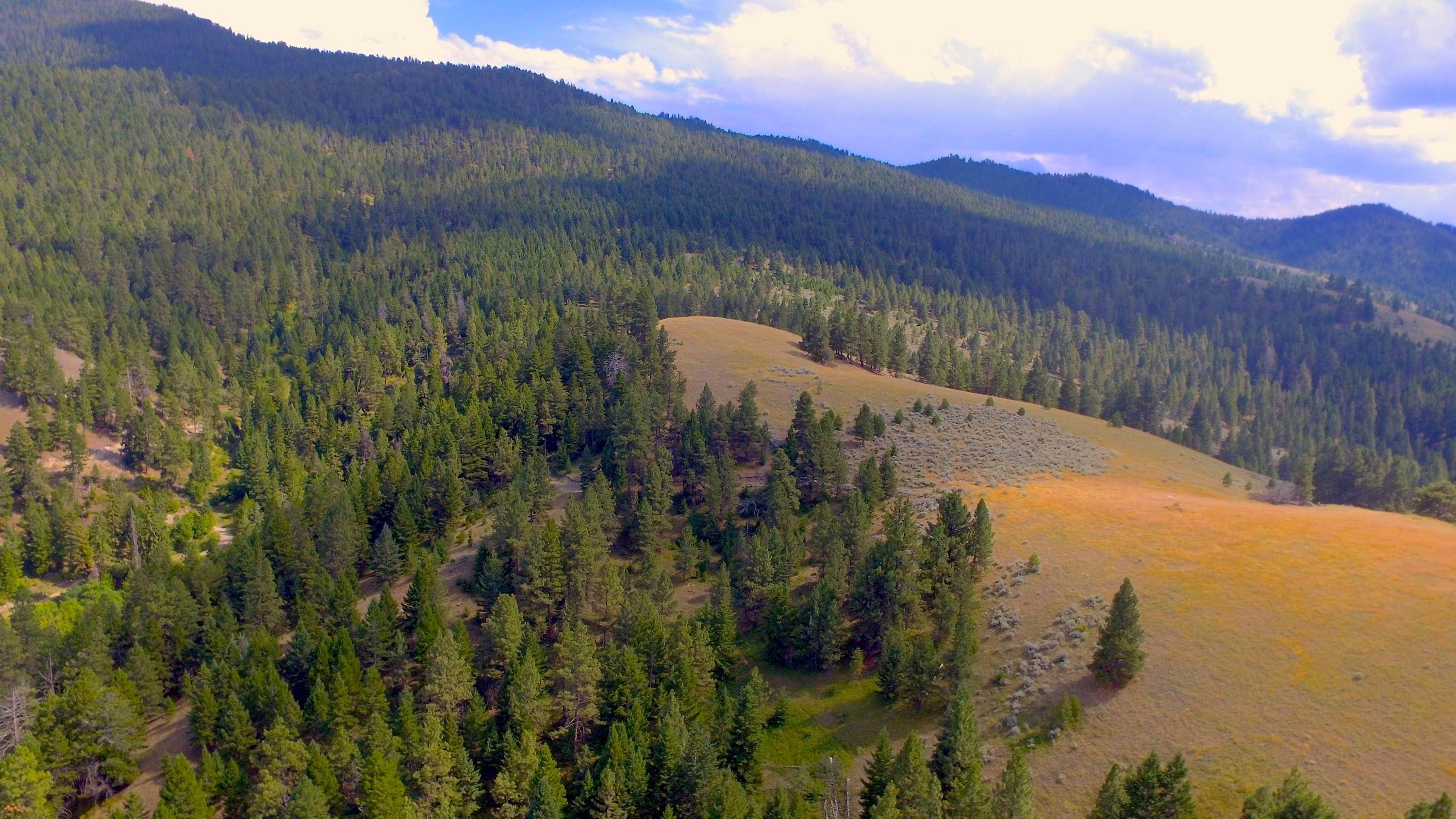 2. Land for Sale at Hamilton Heights Road Corvallis, Montana 59828 United States