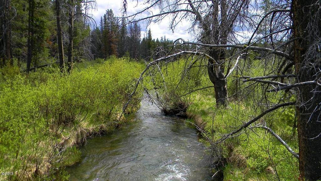 3. Land for Sale at 1399 Willow Creek Road Philipsburg, Montana 59858 United States