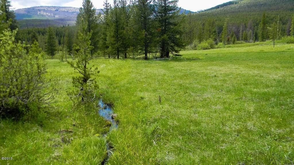 6. Land for Sale at 1399 Willow Creek Road Philipsburg, Montana 59858 United States