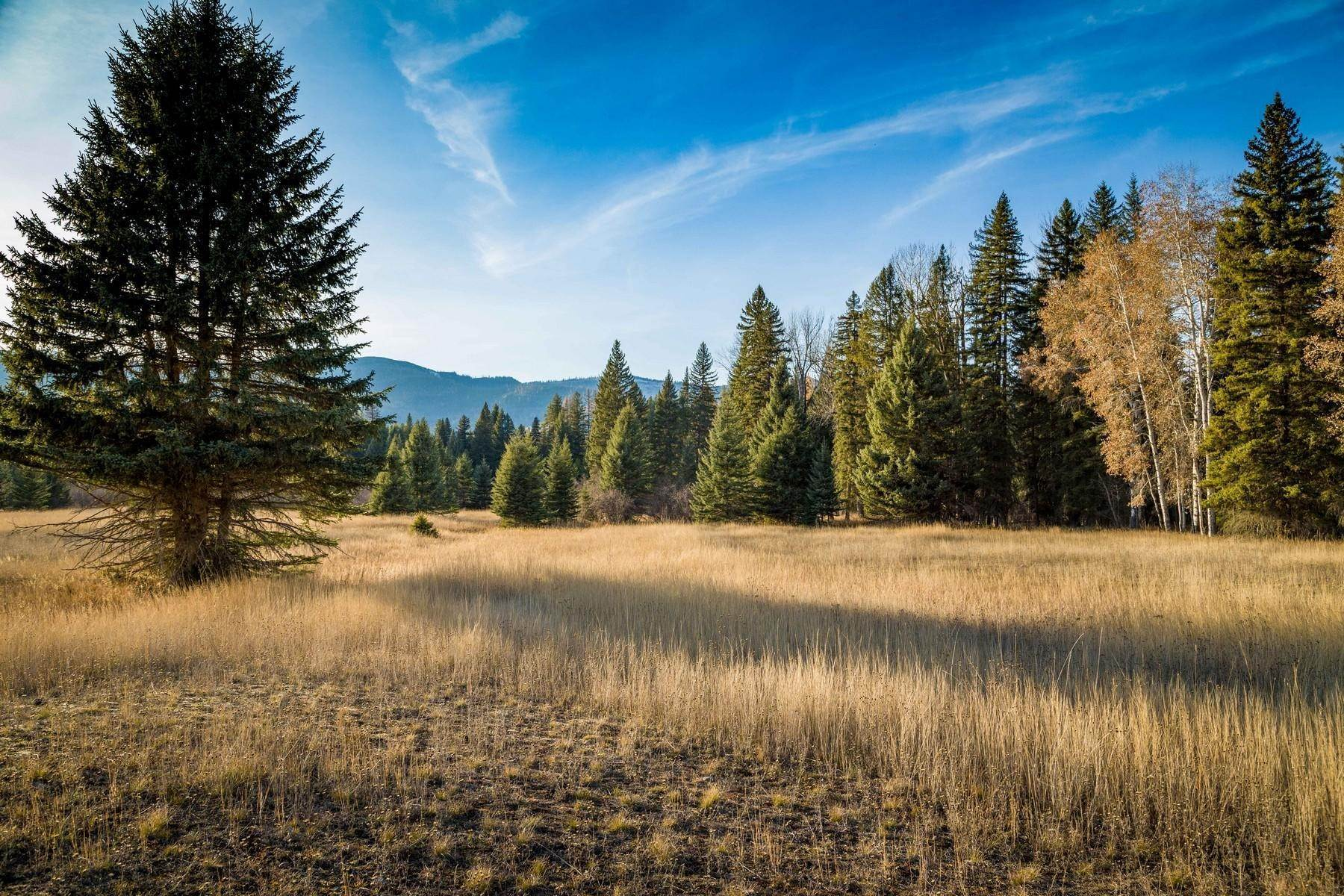 9. Land for Sale at Fatty Creek Swan Lake, Montana 59911 United States