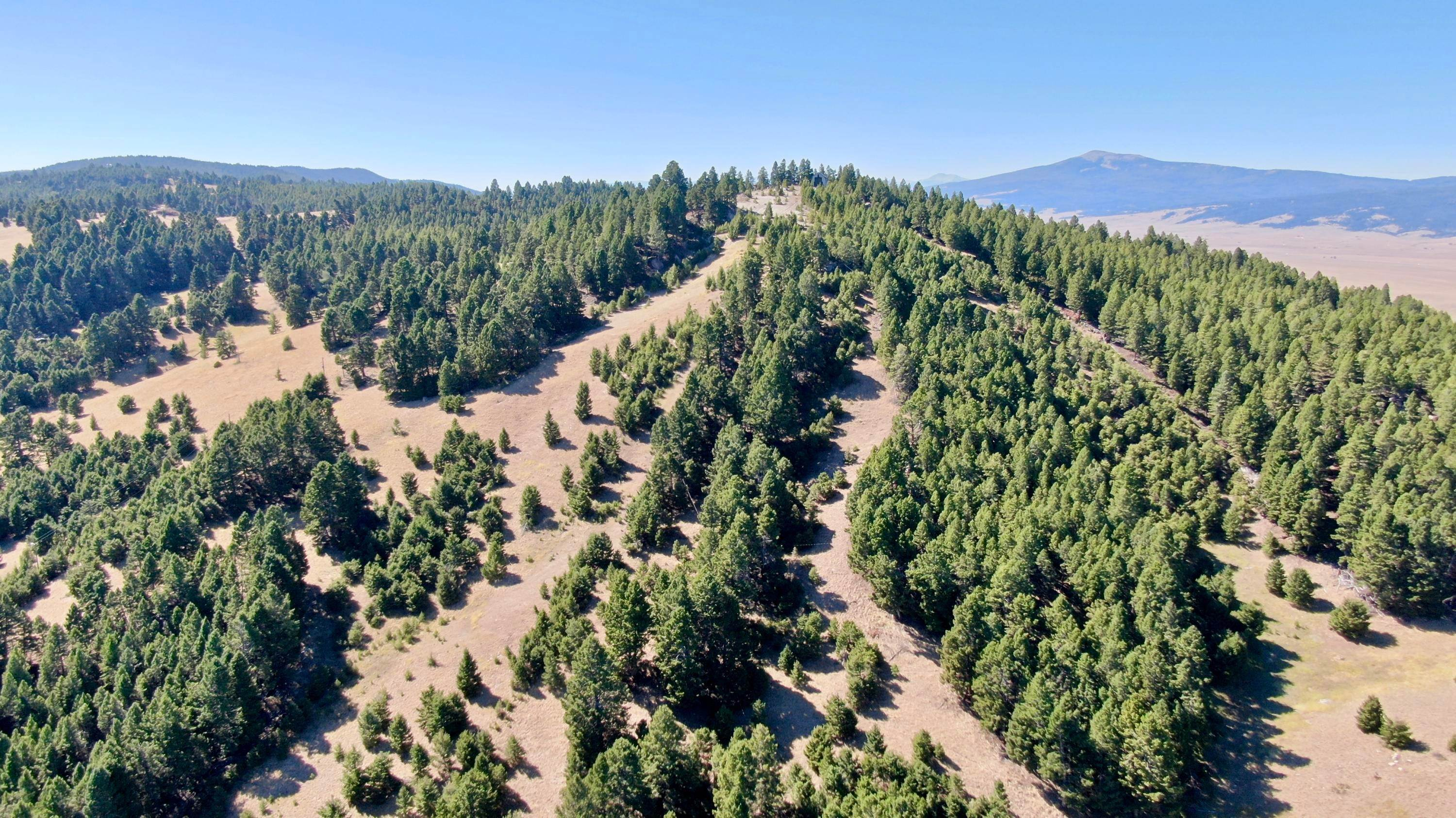 Land for Sale at Beef Trail Road Butte, Montana 59701 United States