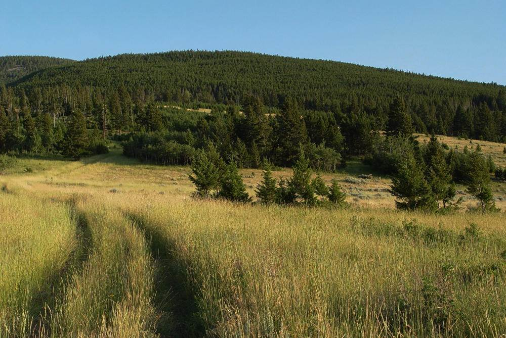 Land for Sale at Wineglass Grazing Ranch Helmville, Montana 59843 United States