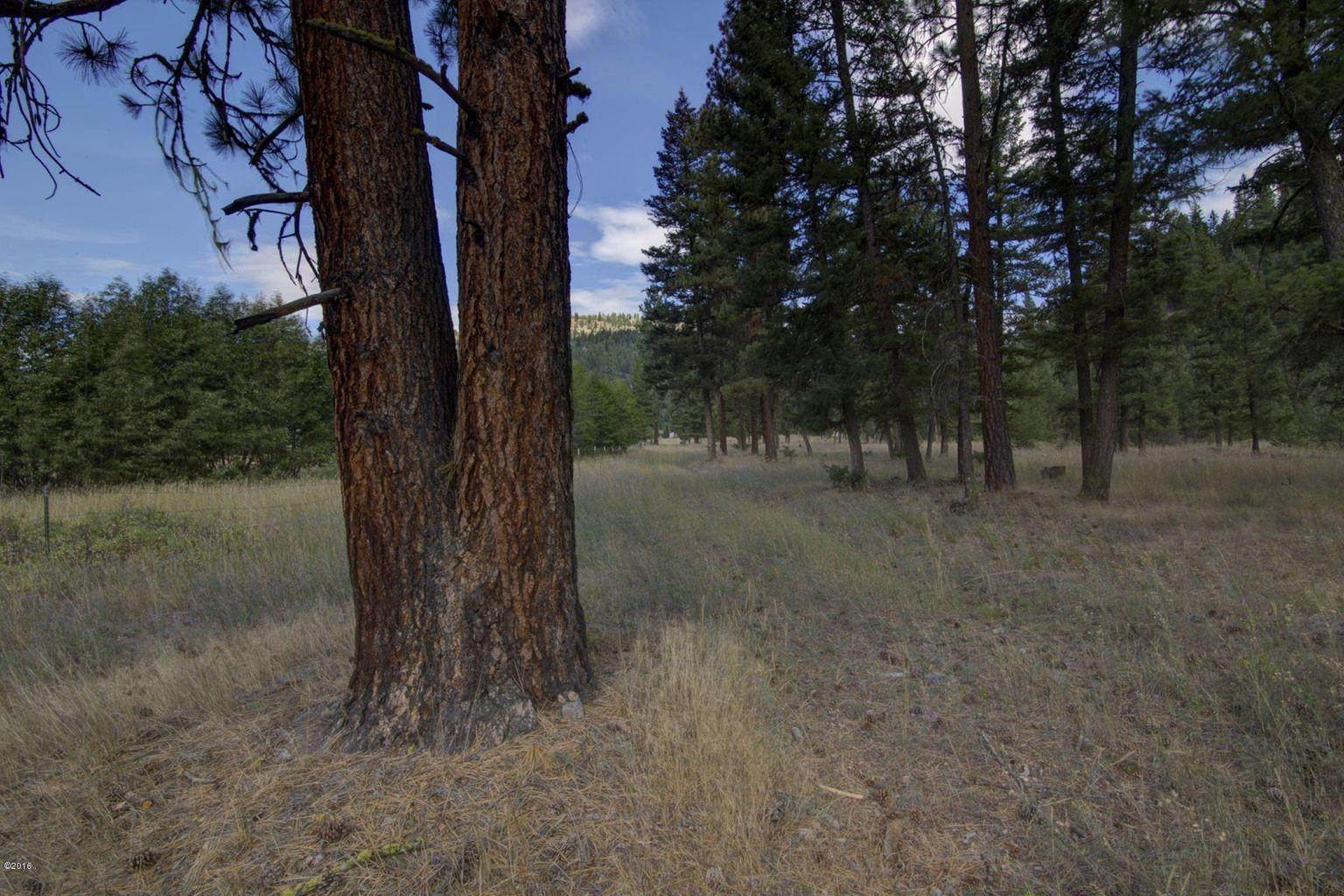 20. Single Family Homes for Sale at 12500 Cramer Creek Road Clinton, Montana 59825 United States