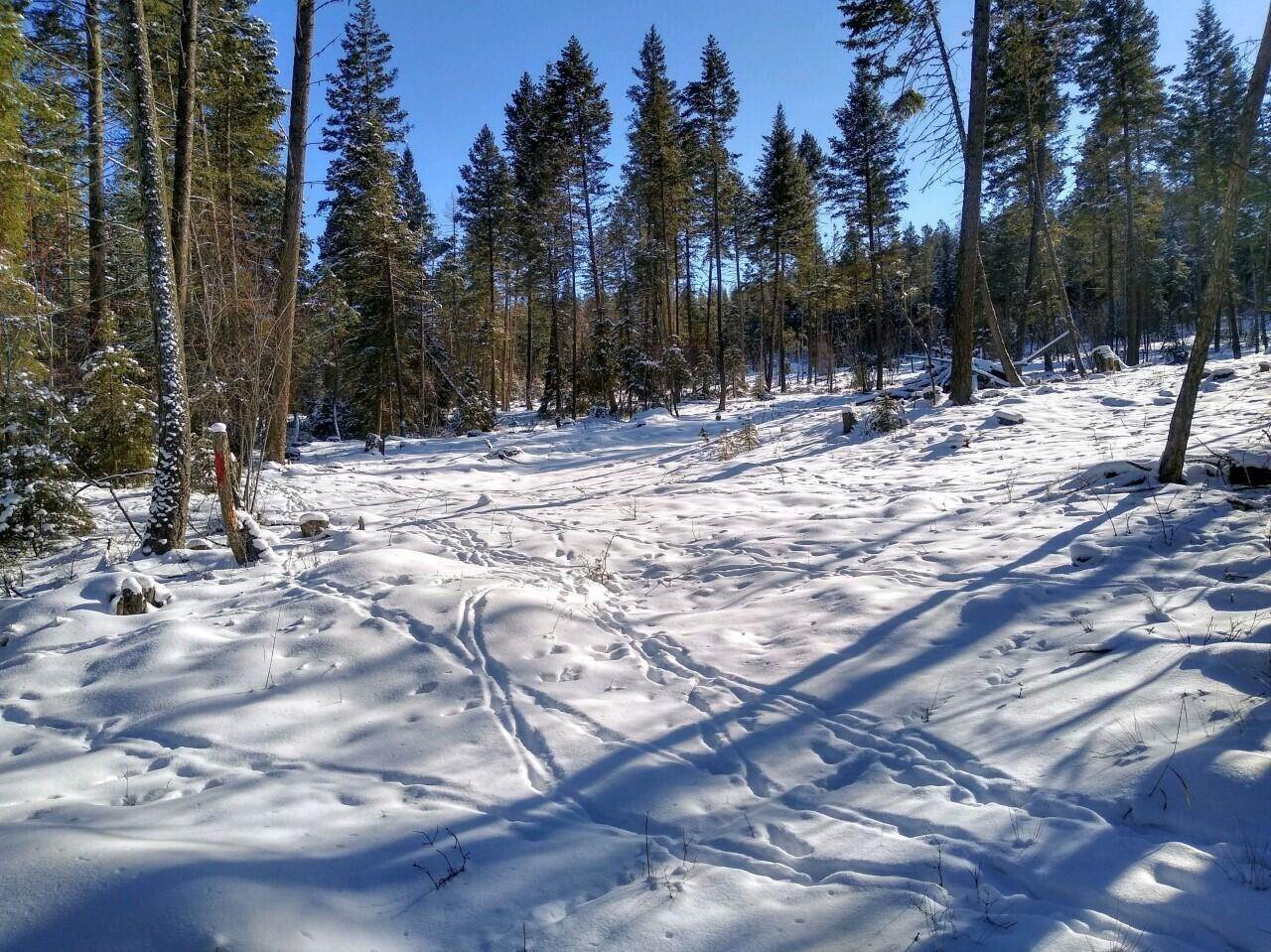 Land for Sale at 1050 Spring Hill Road Kila, Montana 59920 United States