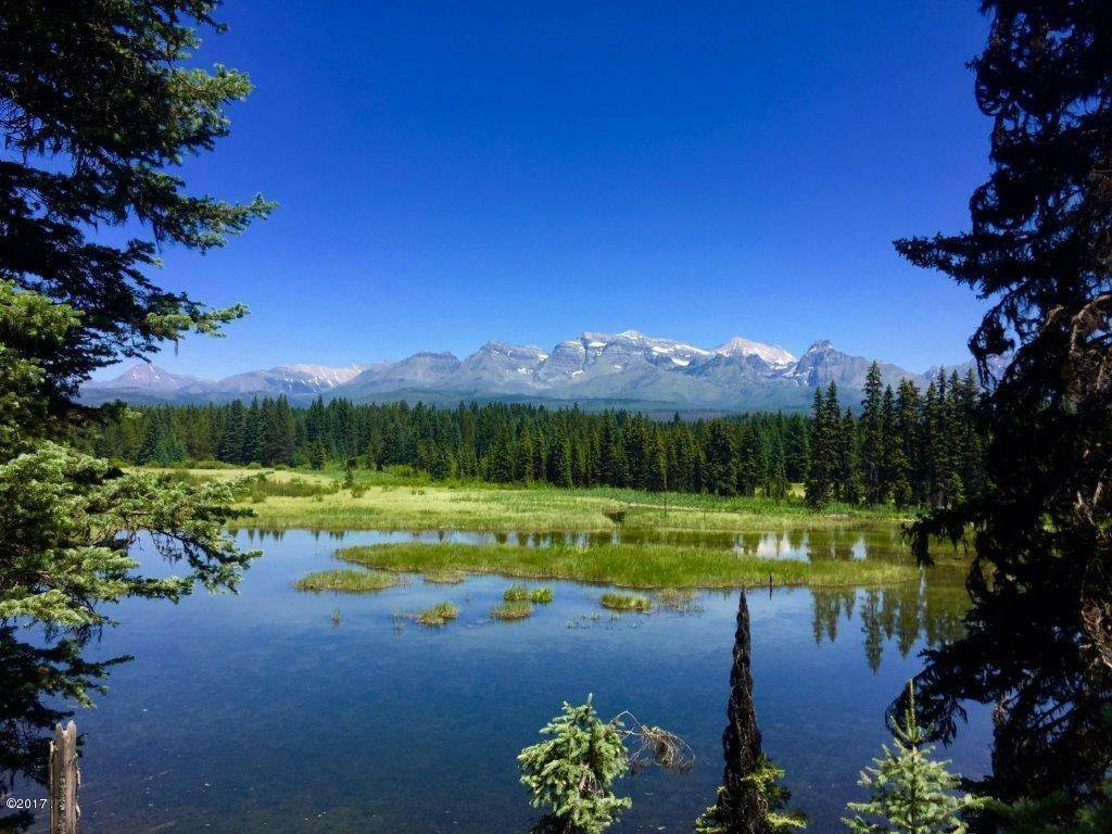 Land for Sale at Nhn(173ac) North Fork Road Polebridge, Montana 59928 United States
