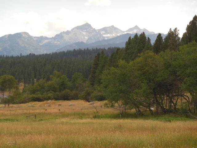 Land for Sale at 201 Gold Creek Loop Hamilton, Montana 59840 United States