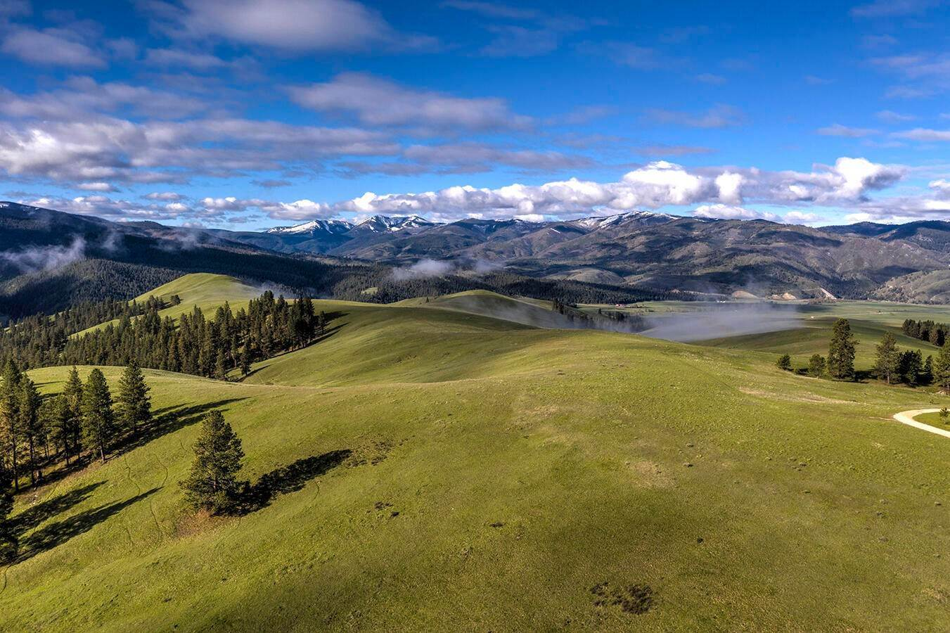 Land for Sale at French Basin Road Sula, Montana 59871 United States
