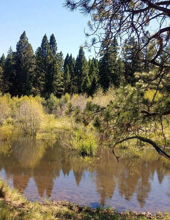 3. Land for Sale at 2261 South Mullan Trail Road Gold Creek, Montana 59733 United States