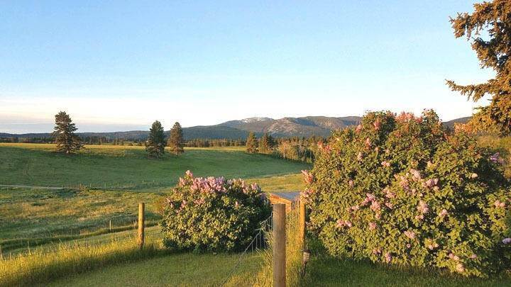 4. Land for Sale at 2261 South Mullan Trail Road Gold Creek, Montana 59733 United States