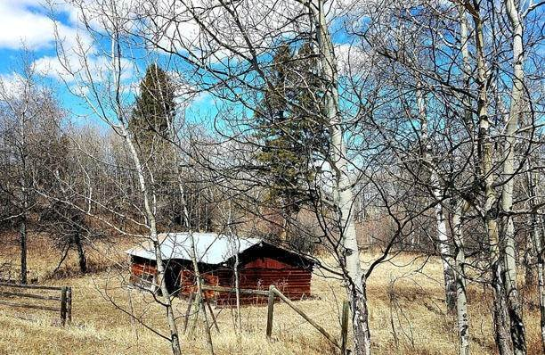 17. Land for Sale at 2261 South Mullan Trail Road Gold Creek, Montana 59733 United States