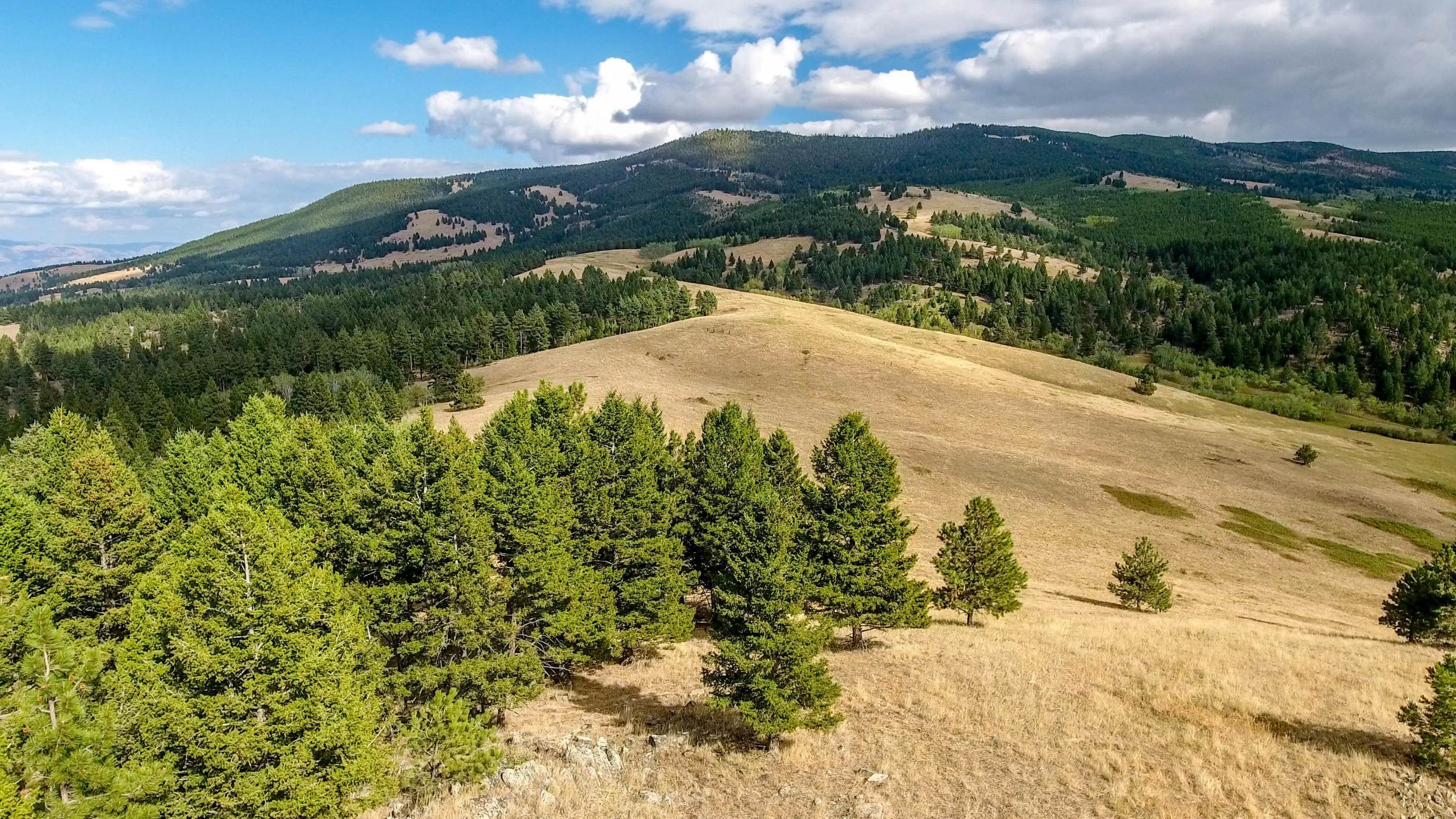 Land for Sale at Mcclellan Creek Road Clancy, Montana 59634 United States