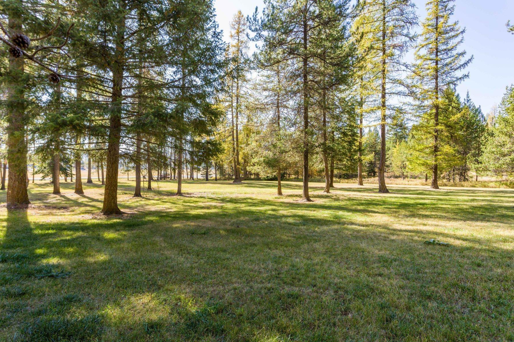 18. Land for Sale at Northwest Montana Forest, Meadows and Ponds 295 Garland Lane Whitefish, Montana 59937 United States