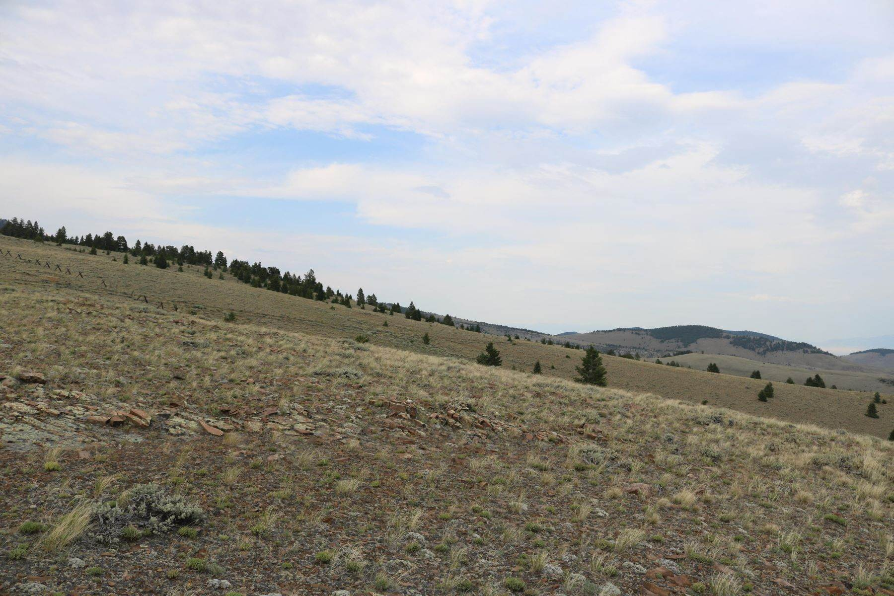 Land for Sale at 20a Long John Road Dillon, Montana 59725 United States