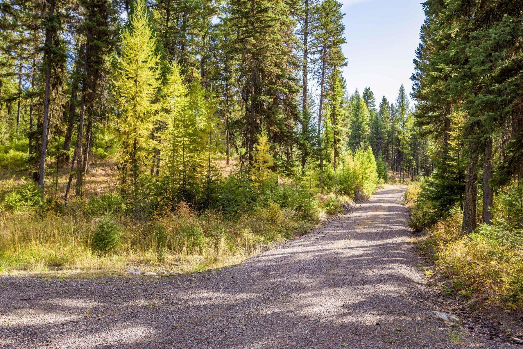 28. Land for Sale at Northwest Montana Forest, Meadows and Ponds 295 Garland Lane Whitefish, Montana 59937 United States