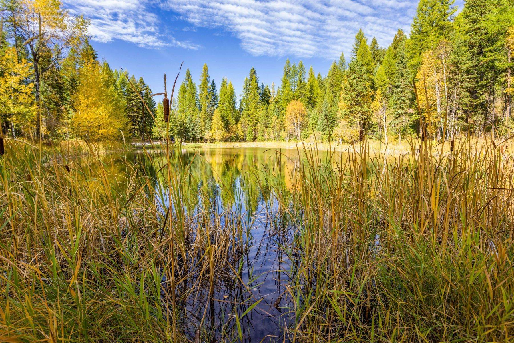 7. Land for Sale at Northwest Montana Forest, Meadows and Ponds 295 Garland Lane Whitefish, Montana 59937 United States