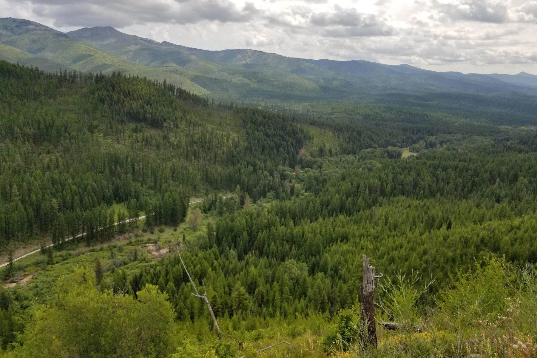 Land for Sale at Nhn 9 Mile Road Huson, Montana 59846 United States