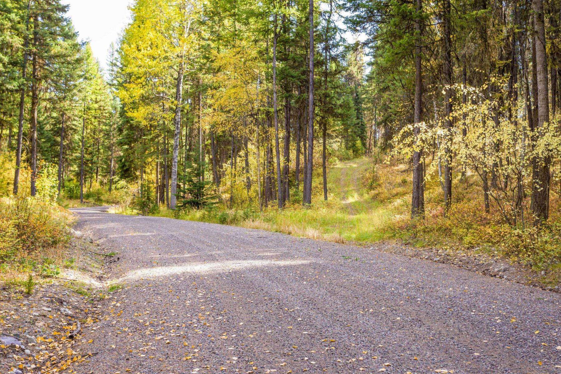 5. Land for Sale at Northwest Montana Forest, Meadows and Ponds 295 Garland Lane Whitefish, Montana 59937 United States