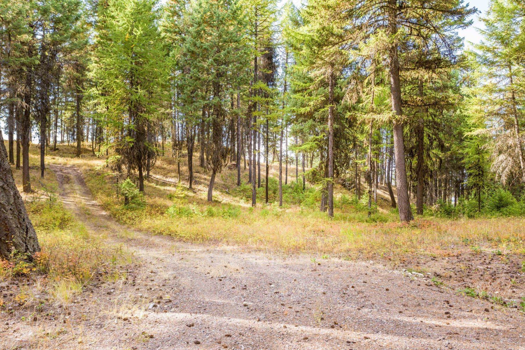 29. Land for Sale at Northwest Montana Forest, Meadows and Ponds 295 Garland Lane Whitefish, Montana 59937 United States