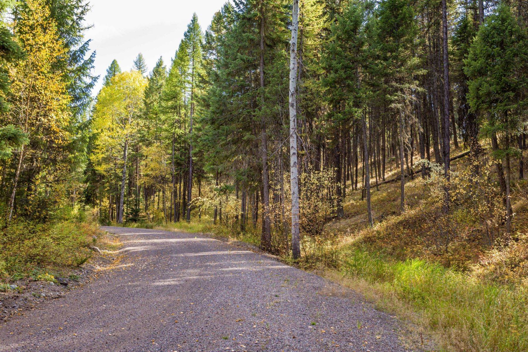 27. Land for Sale at Northwest Montana Forest, Meadows and Ponds 295 Garland Lane Whitefish, Montana 59937 United States