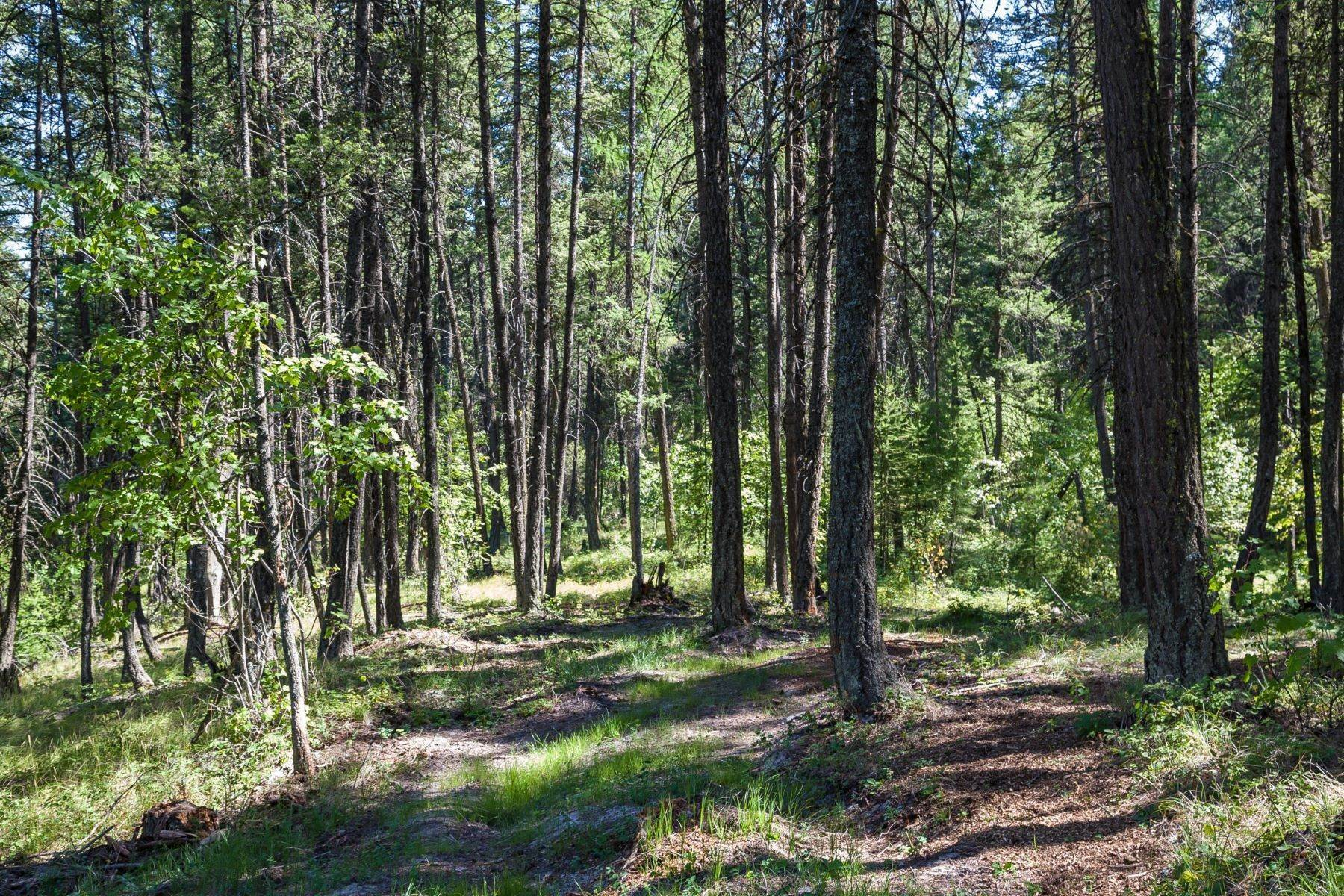 7. Land for Sale at 835 Whitefish Ranch Road, Lot 39 835 Whitefish Ranch Road , lot 39 Whitefish, Montana 59937 United States