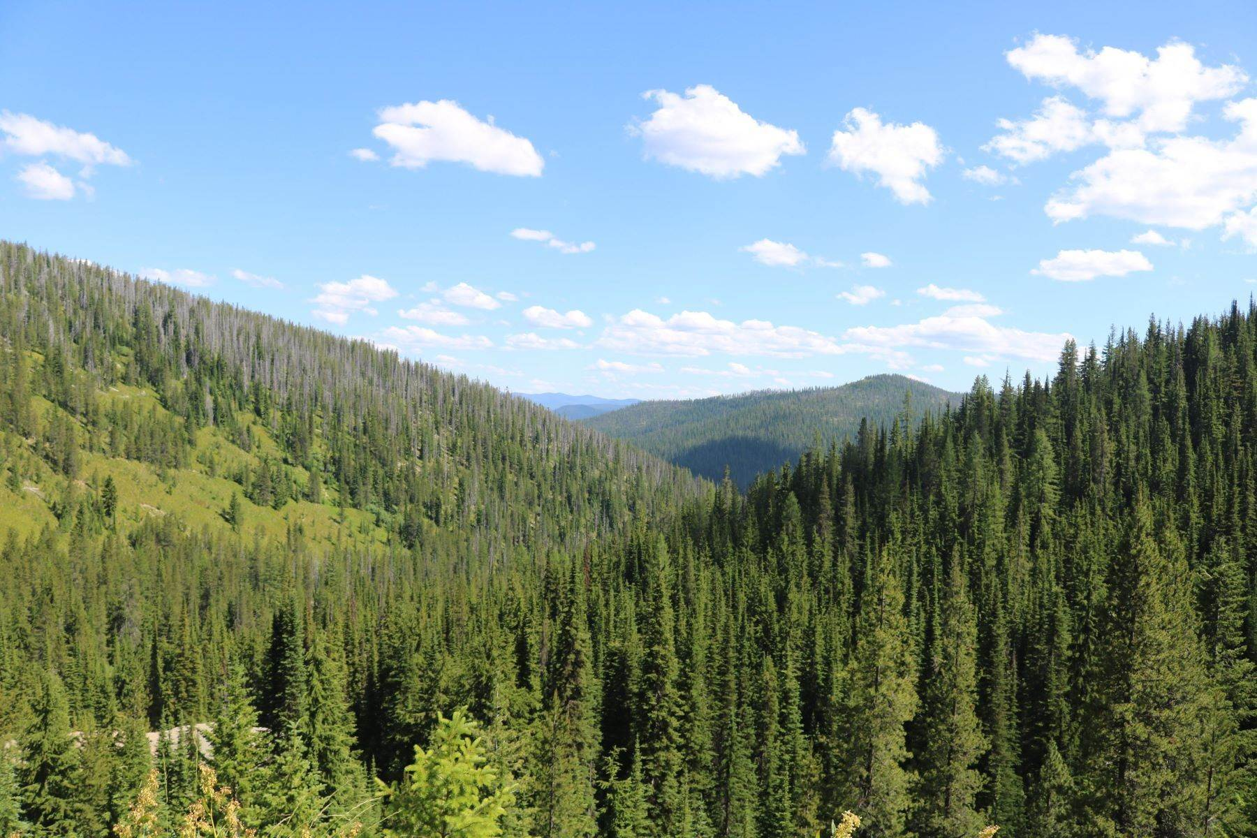 Land for Sale at 17a Old Yellowstone Trail Saltese, Montana 59867 United States