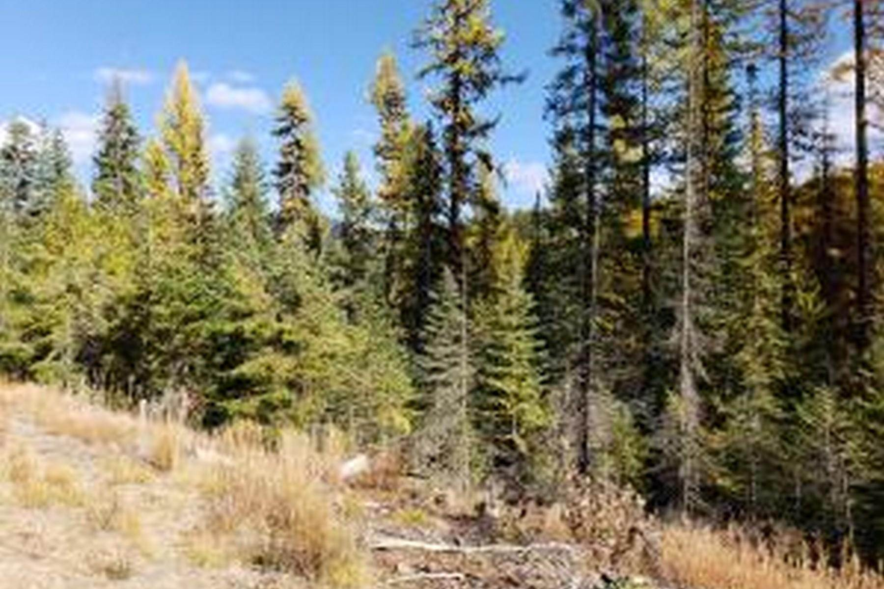 4. Farm and Ranch Properties for Sale at 114a Packer Creek Haugan, Montana 59842 United States