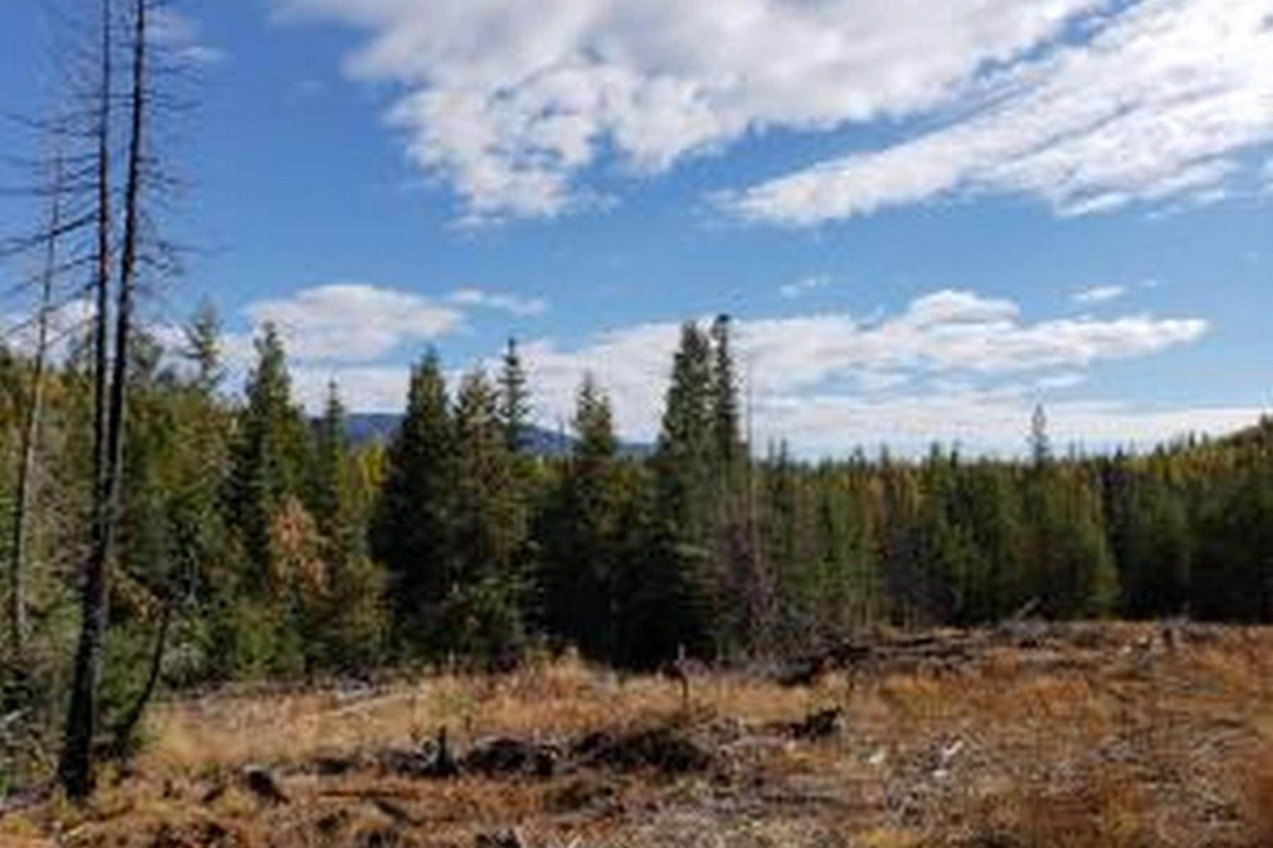 3. Farm and Ranch Properties for Sale at 114a Packer Creek Haugan, Montana 59842 United States