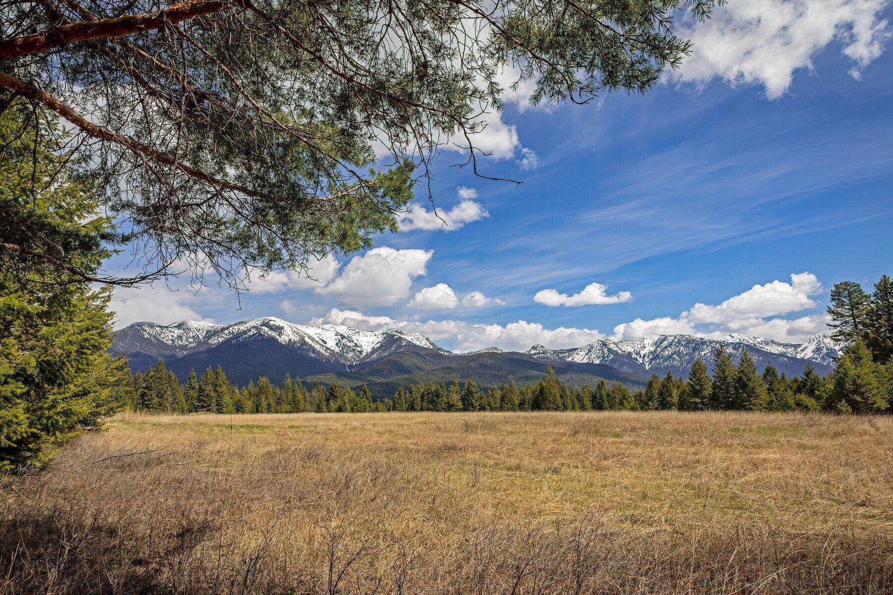Property for Sale at Nhn South Many Lakes Drive Kalispell, Montana 59901 United States