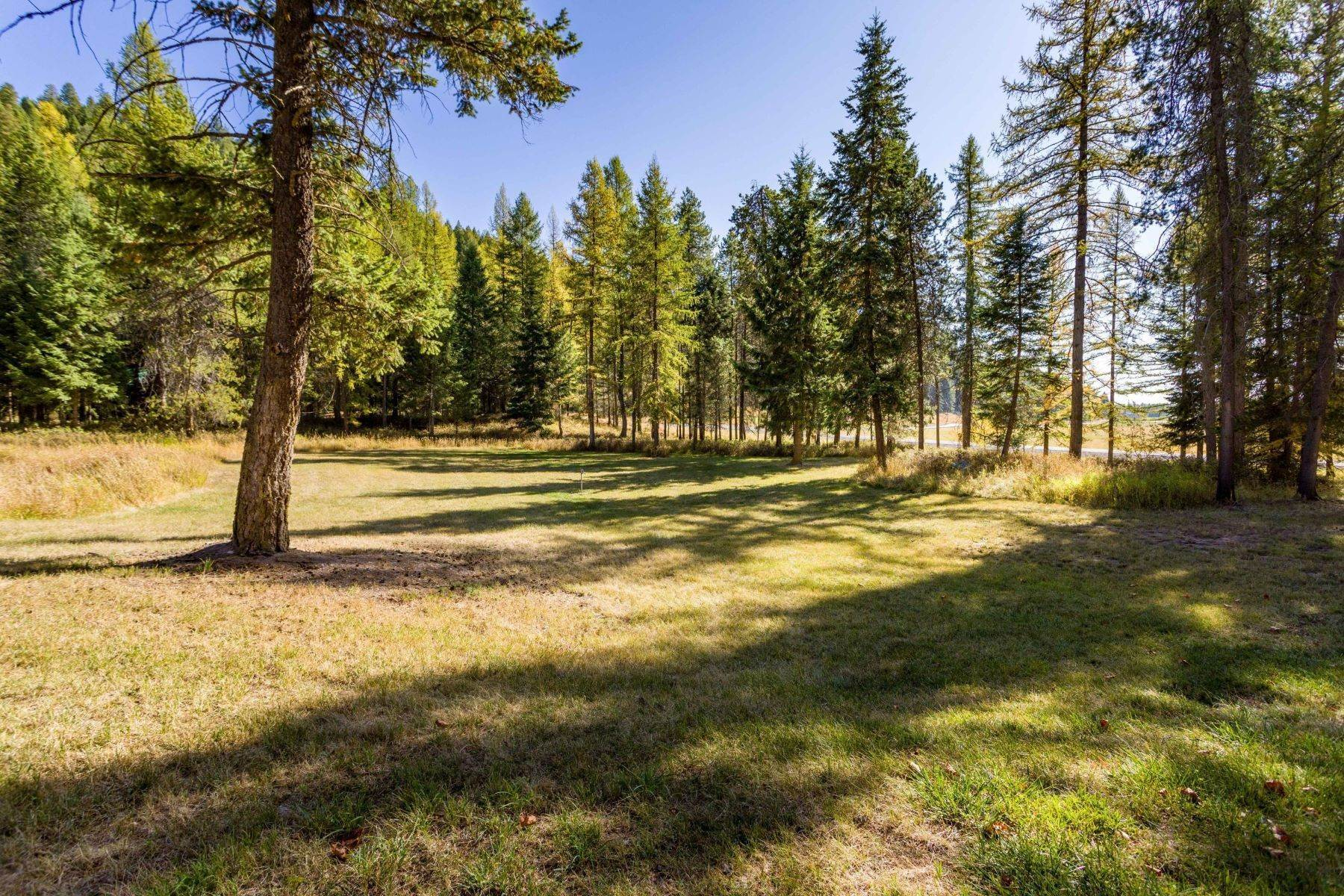 16. Land for Sale at Northwest Montana Forest, Meadows and Ponds 295 Garland Lane Whitefish, Montana 59937 United States
