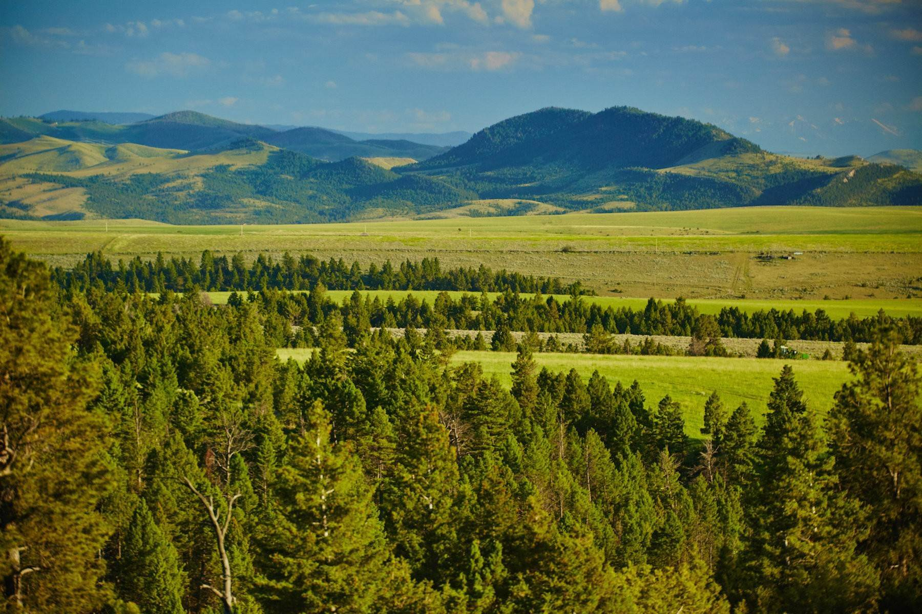 Farm and Ranch Properties for Sale at The Biggs BarX Ranch N Fork Ray Creek Road Townsend, Montana 59644 United States